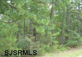 0 JACKSON RD, Mays Landing, New Jersey 08330, ,Lots/land,For Sale,JACKSON RD,485434